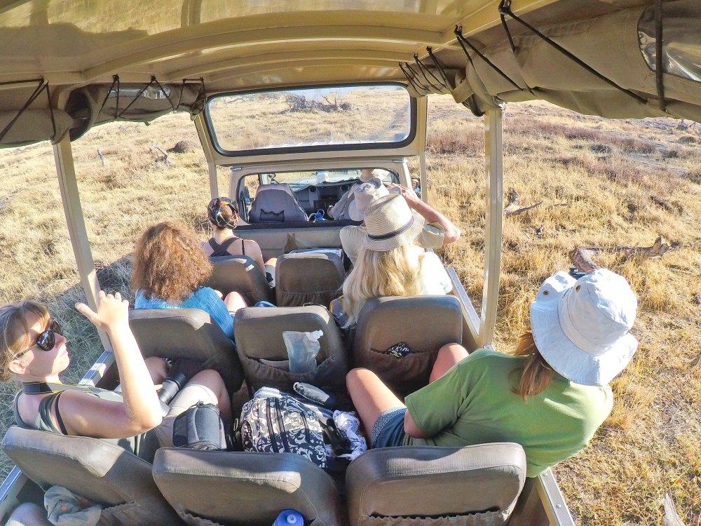 Auf Safari in Botswana im Land Cruiser