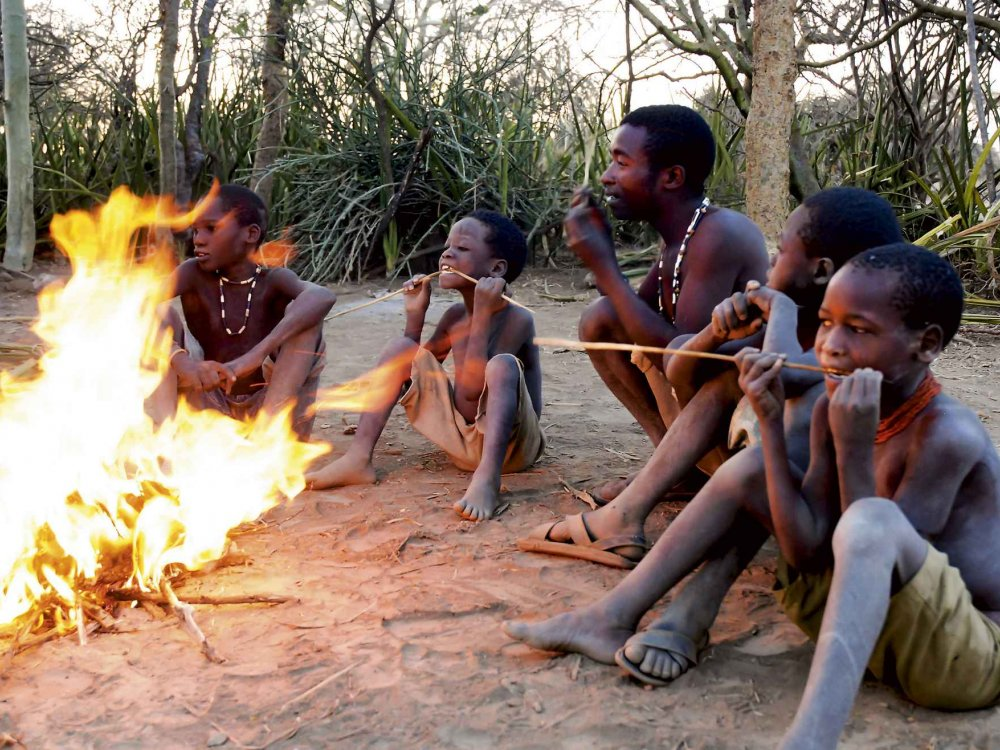 Tansania Aktiv Safari
