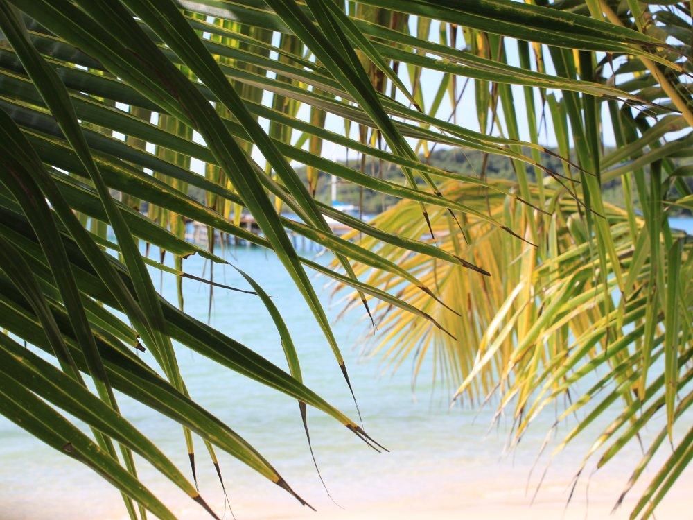 Koh Kood Beach_1