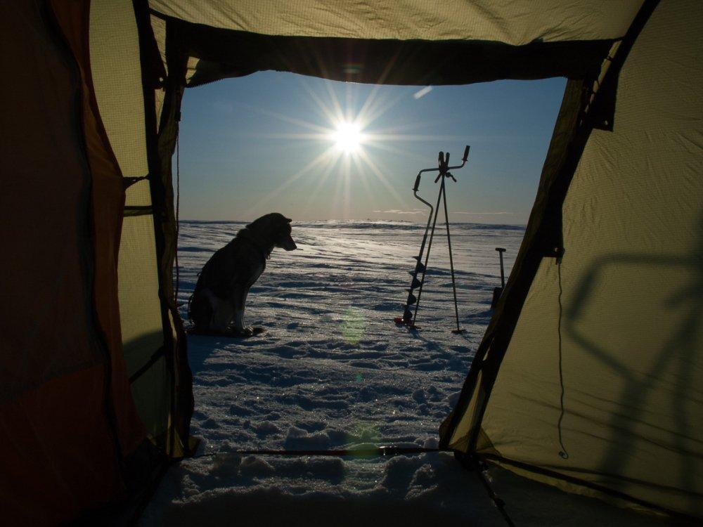 Camping Ski Expeditionen - Blick aus dem Zelt auf das winterliche Finnmark Plateau
