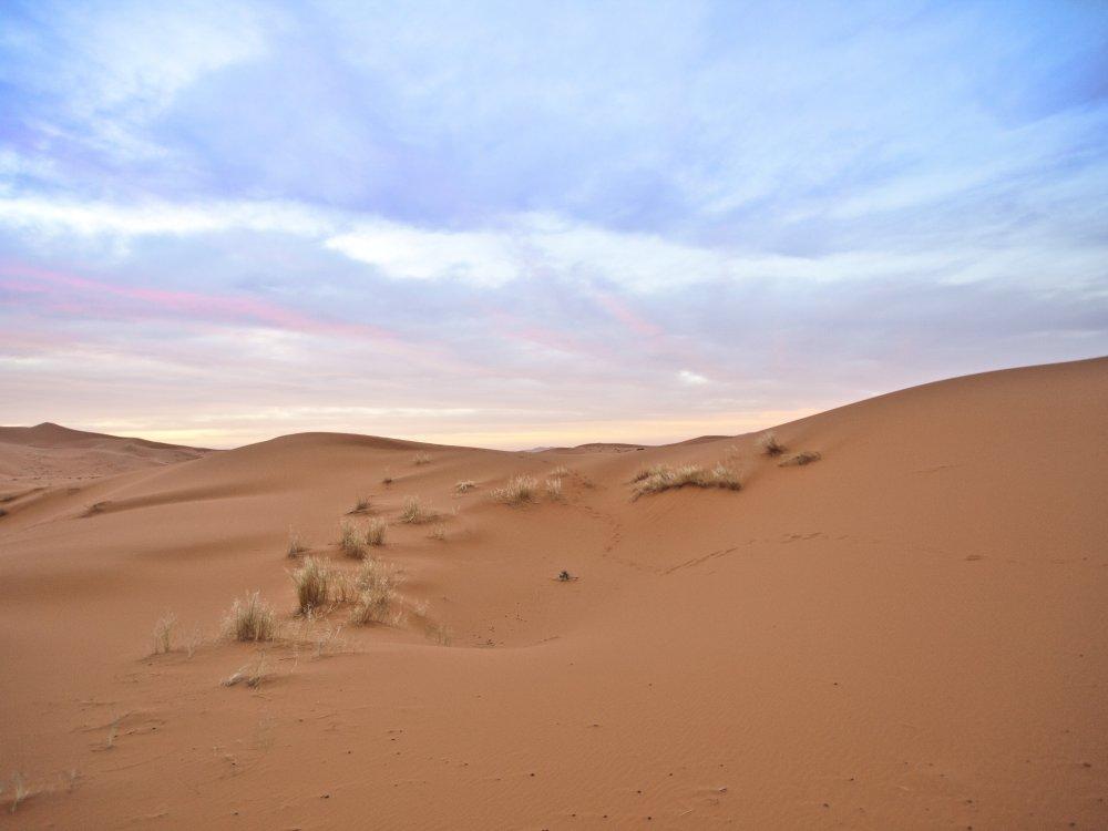 Landschaft in der Sahara Wüste Marokko