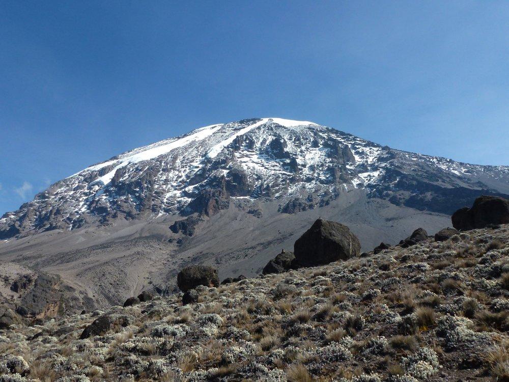 Ausblick auf den Kibo während des Aufstiegs über die Machame Route