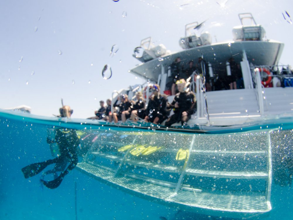 Tauchschiff OceanQuest