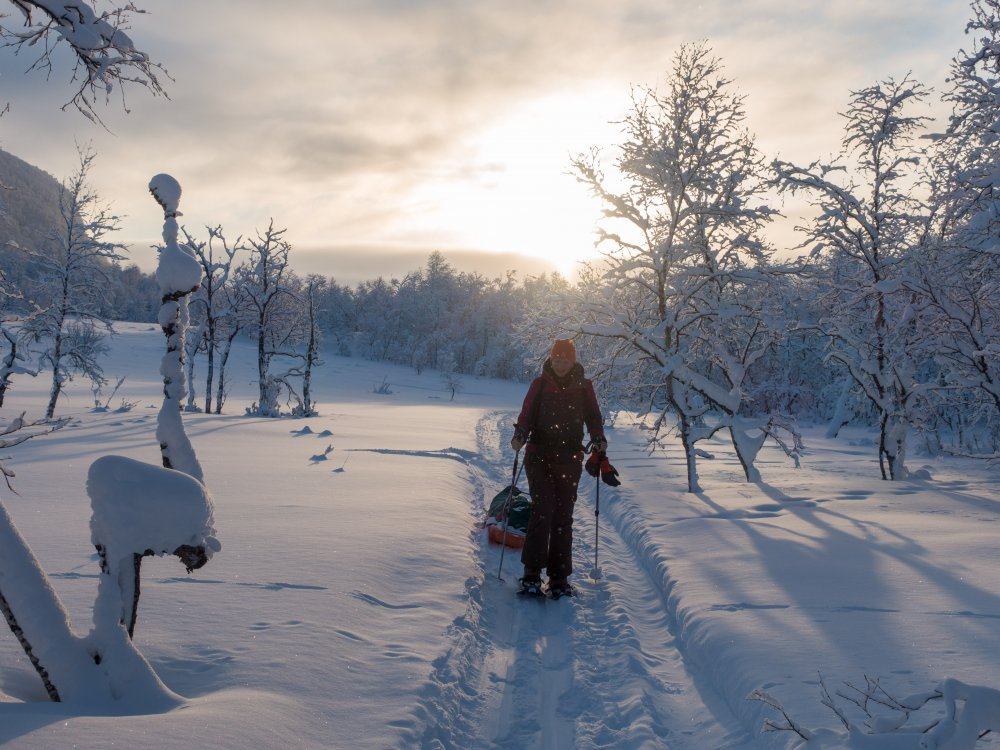 Durch tief verschneiten Wald bei der Schneeschuhtour Vindelfjällen