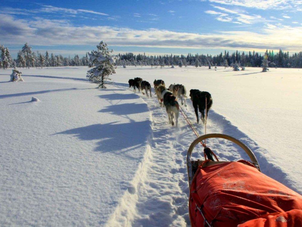 Mit dem Hundeschlitten durch die schwedische Wildnis Karte