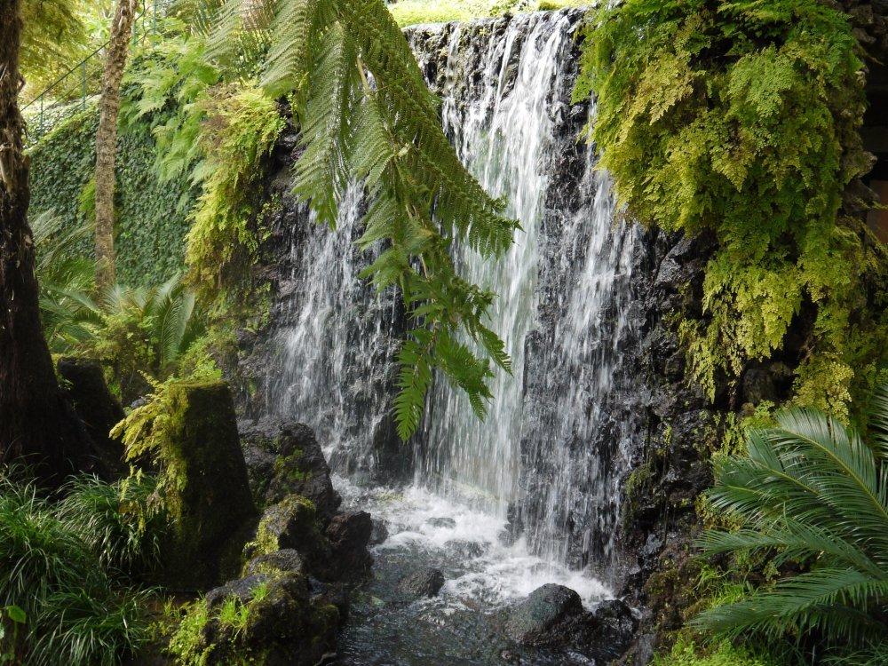 Madeira Wasserfall im grünen Talkessel