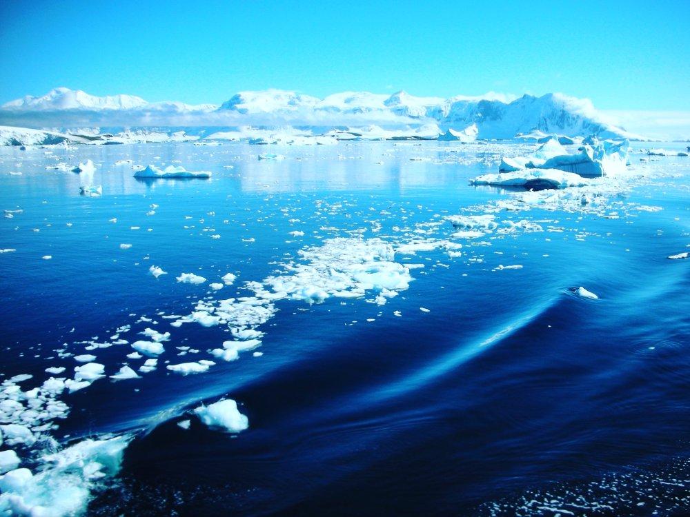 Unterwegs auf einer Antarktis Expedition