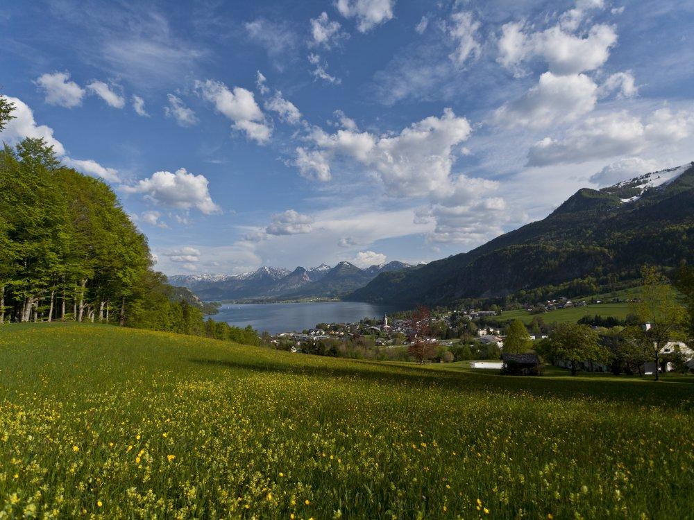 Ausblick zum Wolfgangsee