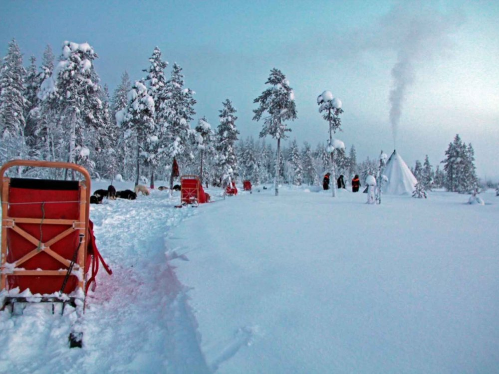 Huskytour durch ein Winterparadies