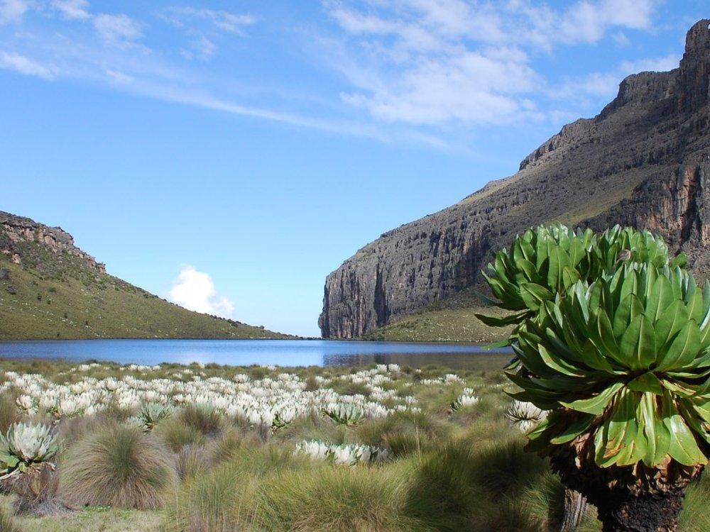 Mt. Kenya Trekking_11