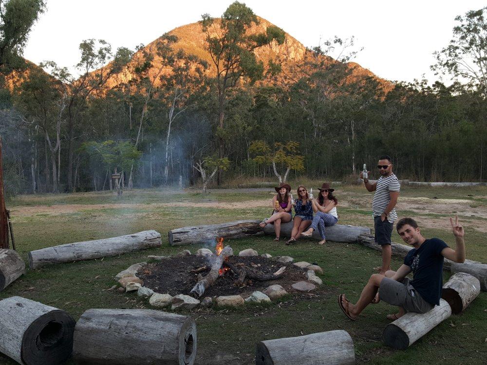 Stray Australia_9