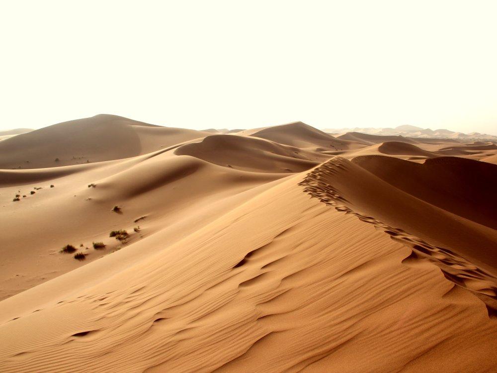 Marokko Dünen der Sahara