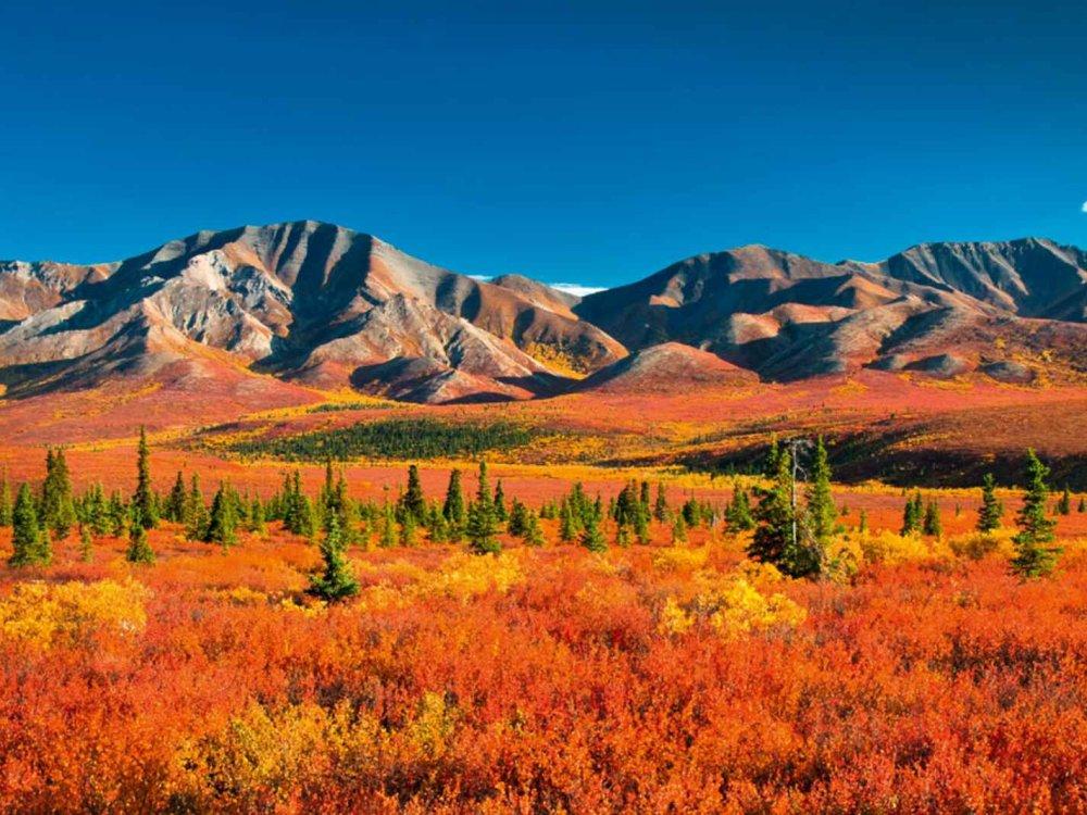 Höhepunkte von Yukon & Alaska