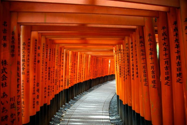 Torii Gates am Fushimi Inari Schrein