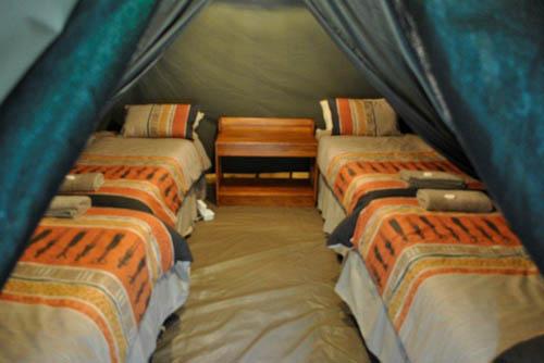 Marcs Camp Tent interior