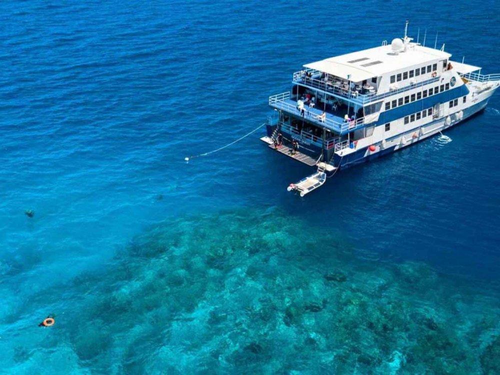Great Barrier Reef Liveaboard - Tauchen & Schnorcheln