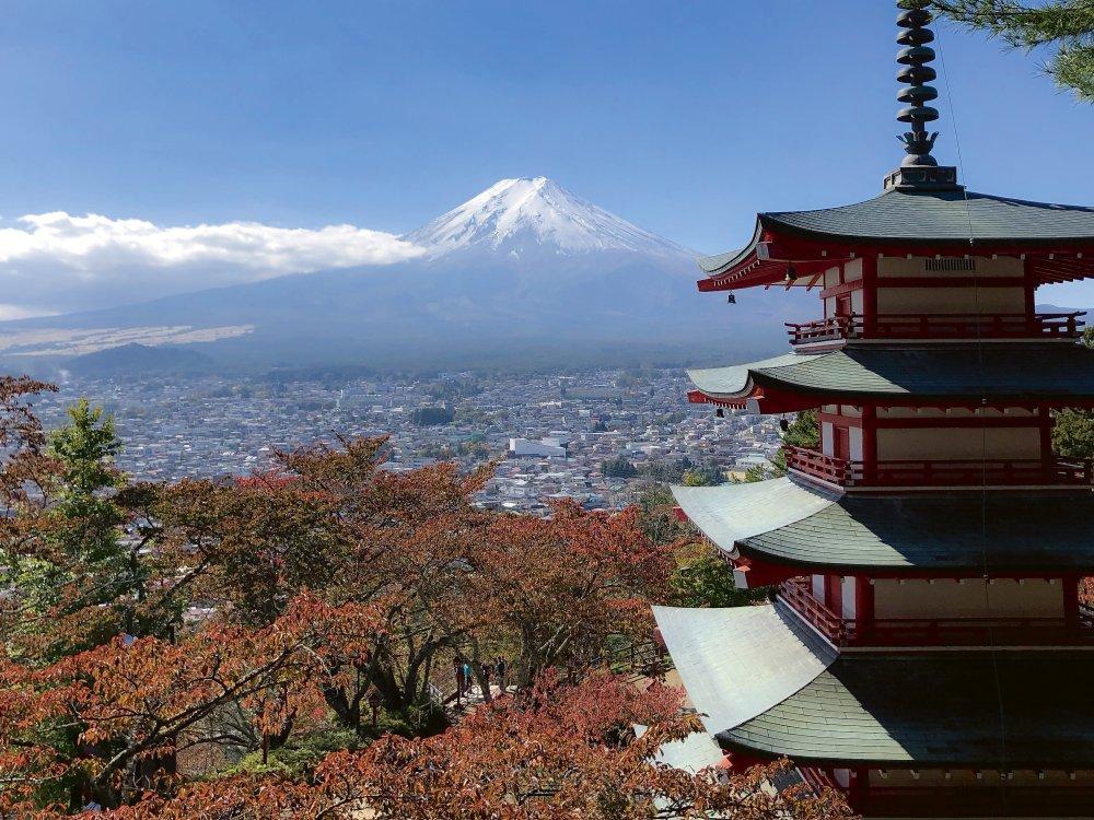 Japan-erleben