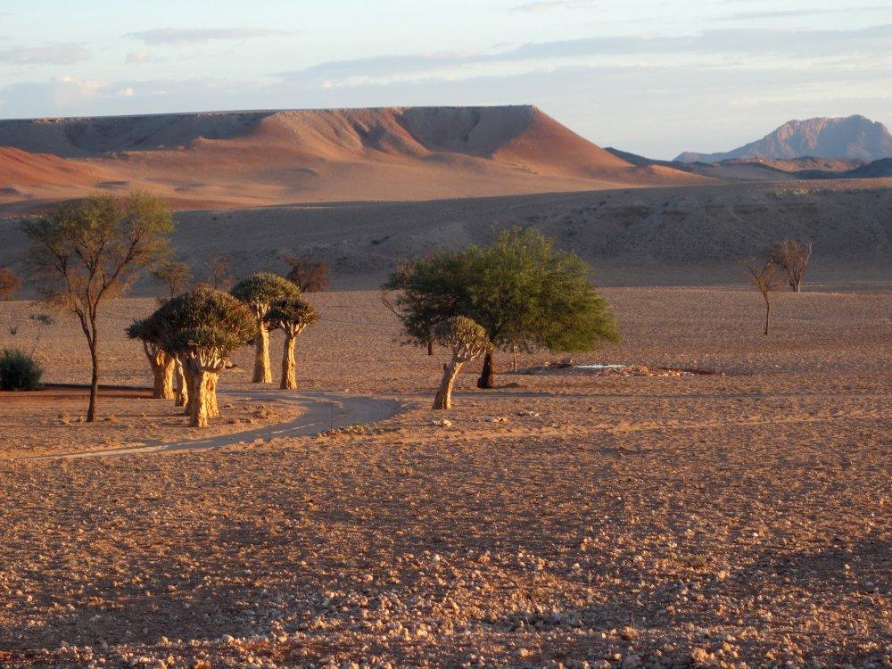 Landschaft-Namibia