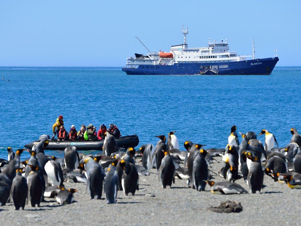 Antarktis Zodiac Ausflug zu Pinguinen
