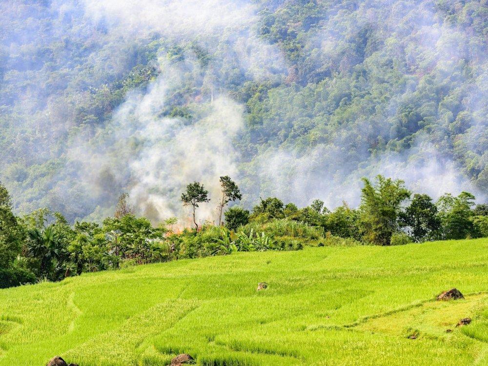 Herrliche Landschaft im Pu Luong Naturreservat