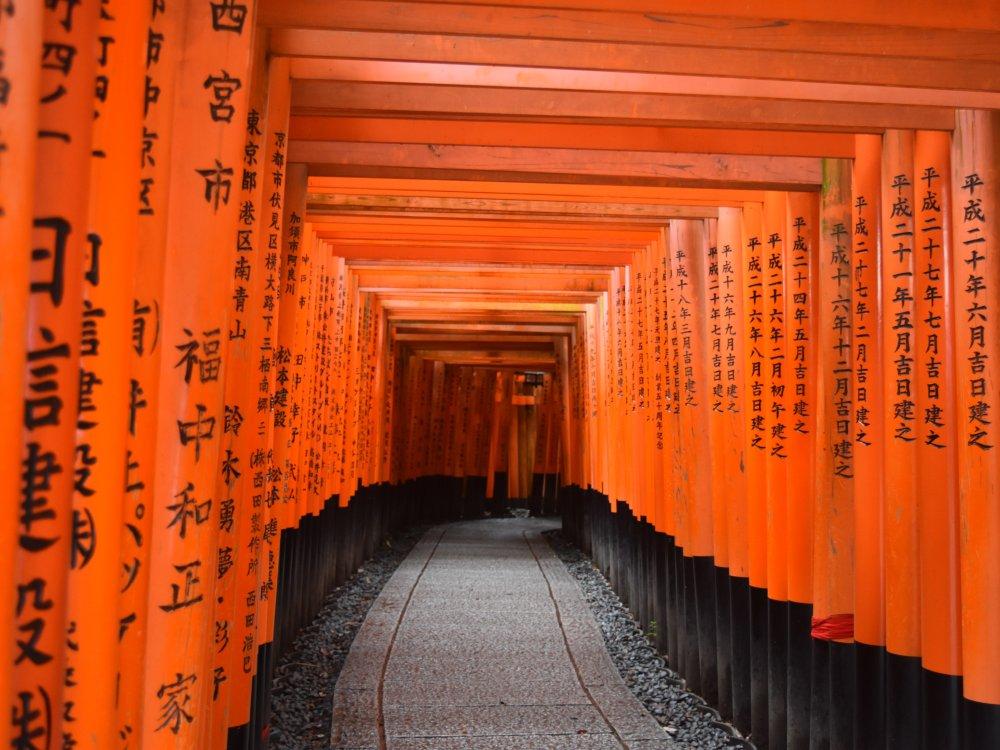 Fußweg am Fushimi Inari Taisha Schrein