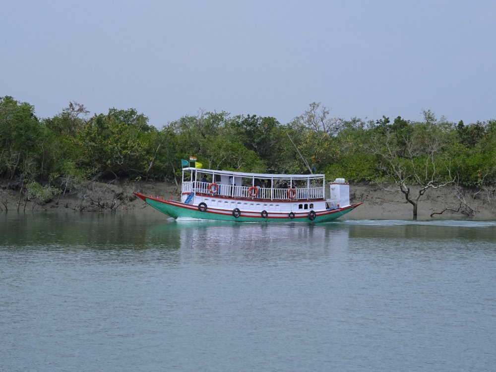 Sundarbans Boot