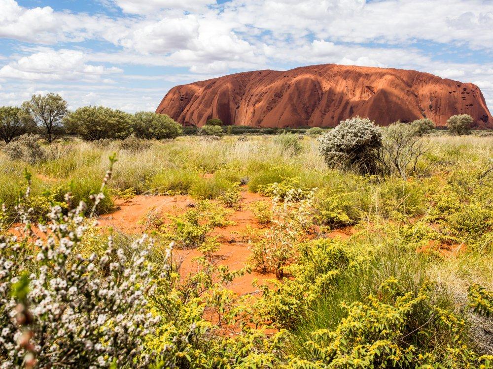 Uluru (Ayers Rock)_7