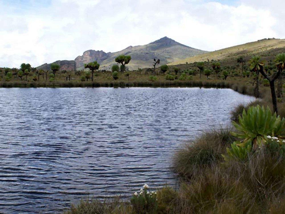 Mount Elgon Trekking