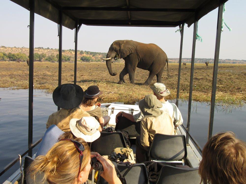 Botswana Chobe Bootsafari