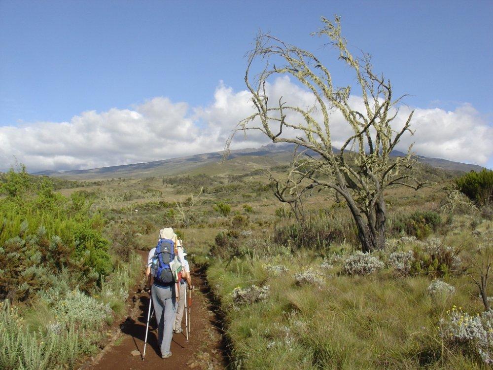 Mt. Kenya Trekking_4