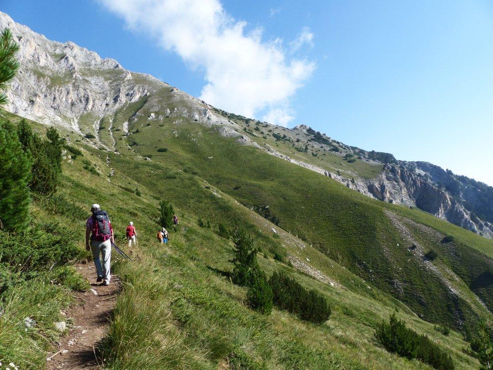 Bulgariens Berglandschaften -  Grüner Berg