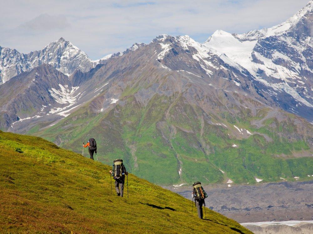 Zu Fuß die Wildnis im Herzen des Denali erkunden