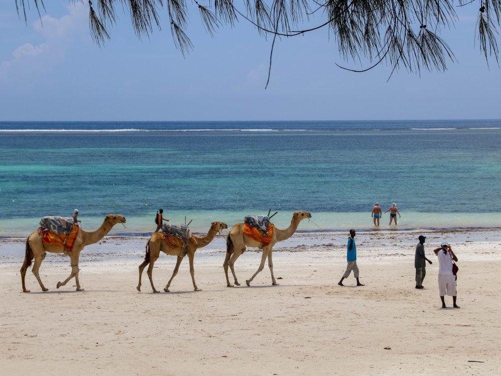 Diani Beach Kenia