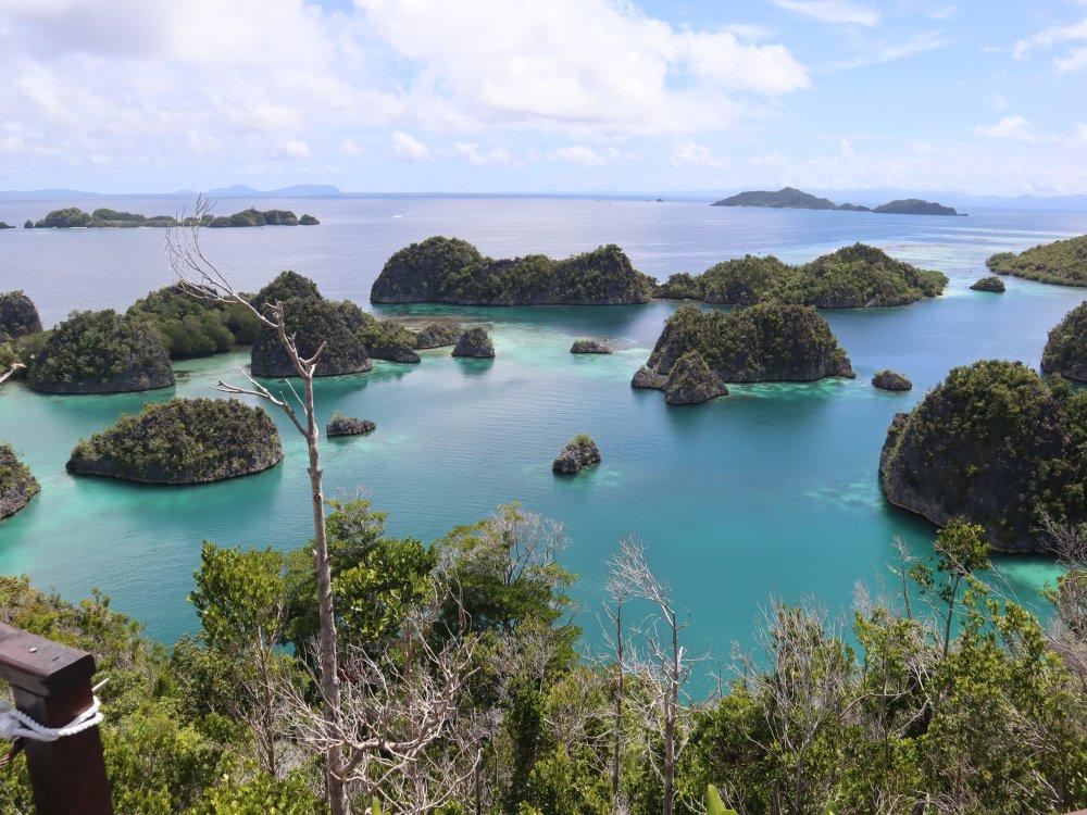 Raja Ampat Inseln
