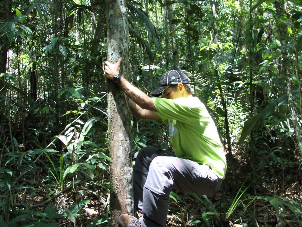 Guide_Amazonas