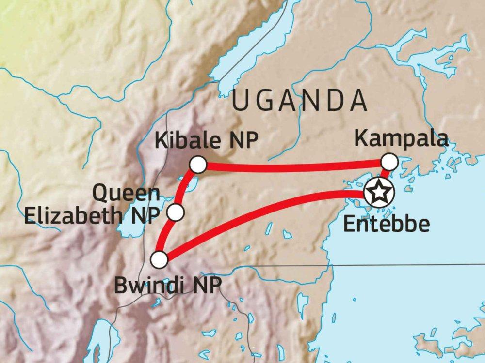 196Y10007 Gorilla & Schimpansen Safari Karte