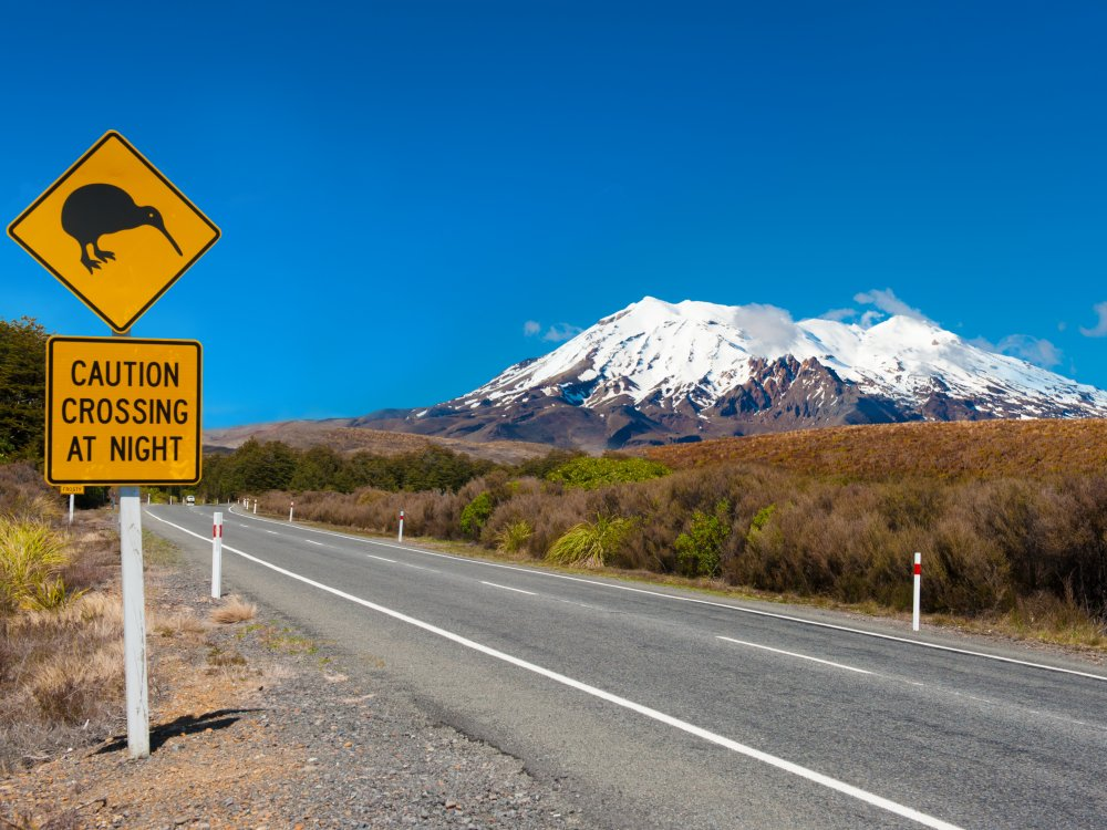 Kiwi-Straßenschild