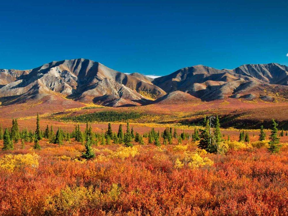 Yukon und Alaska Entdeckerreise
