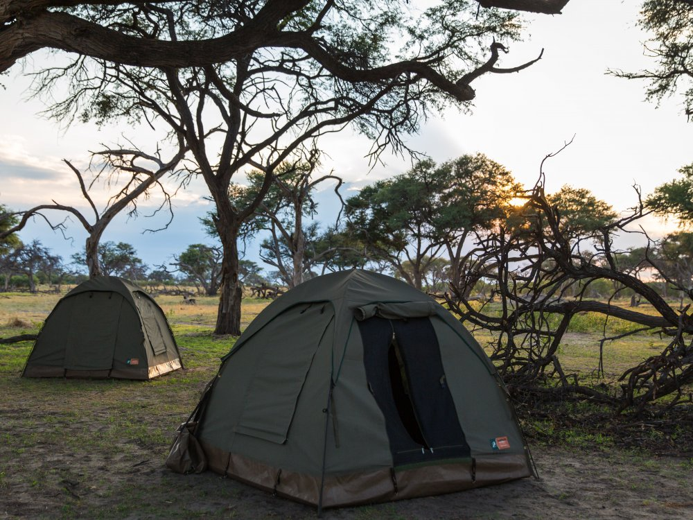 Camping Safari Botswana Zelte