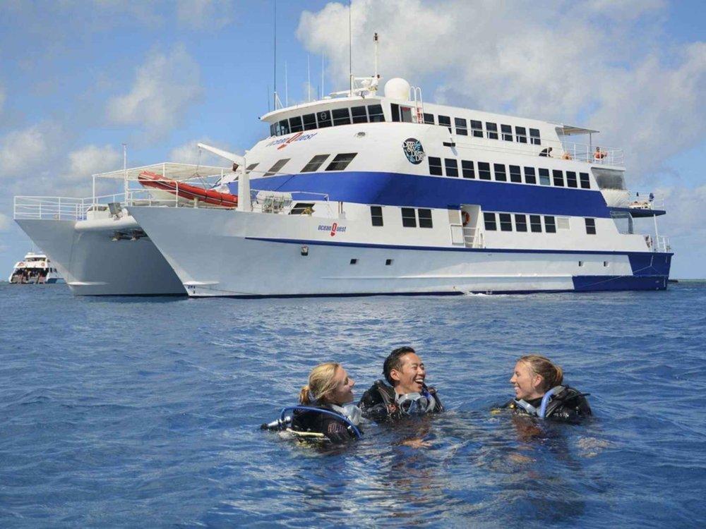 Great Barrier Reef Cruise - Tauchen & Schnorcheln