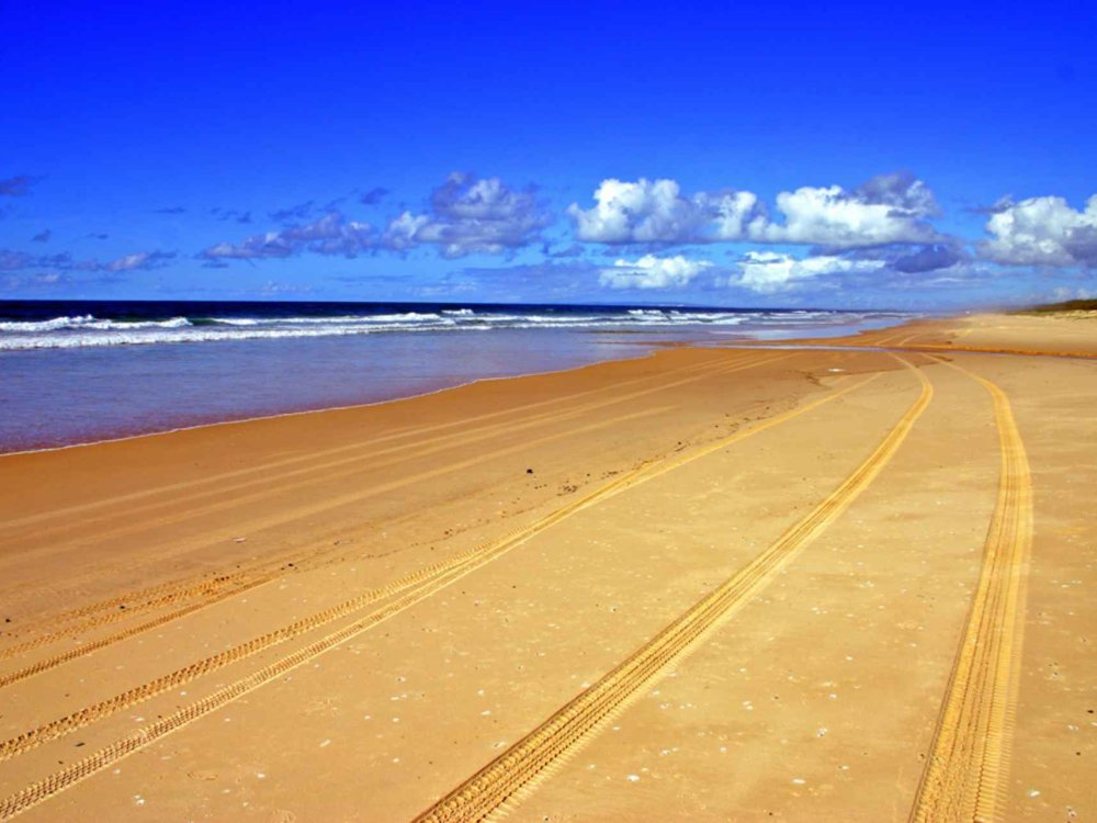 Fraser Island 4WD Adventure & Rainbow Beach