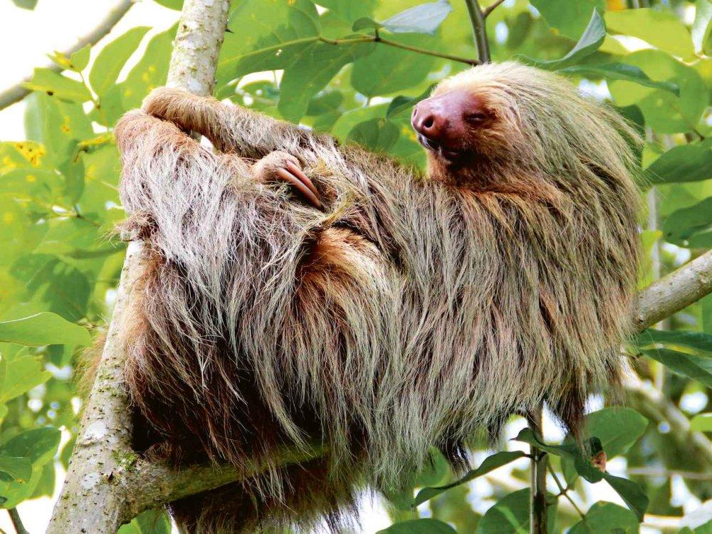 Versteckte Naturschönheiten Costa Rica