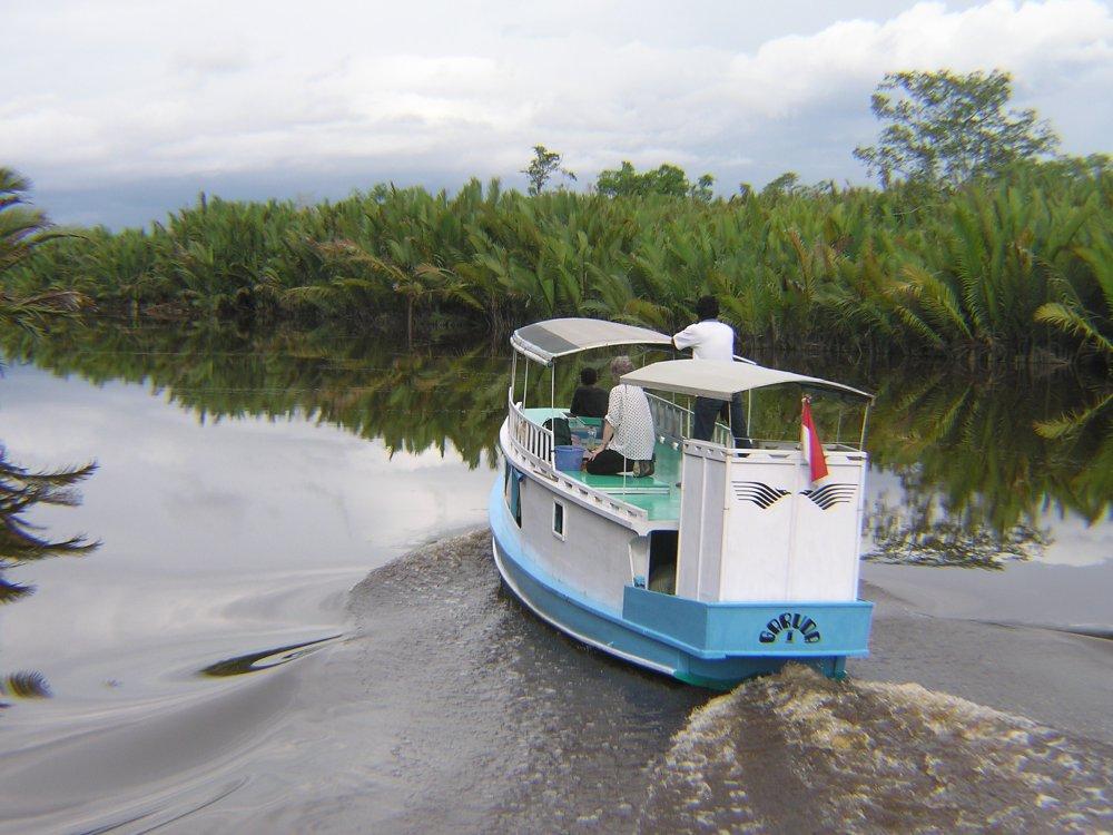 Boot zwischen Mangroven - Tanjung Puting NP