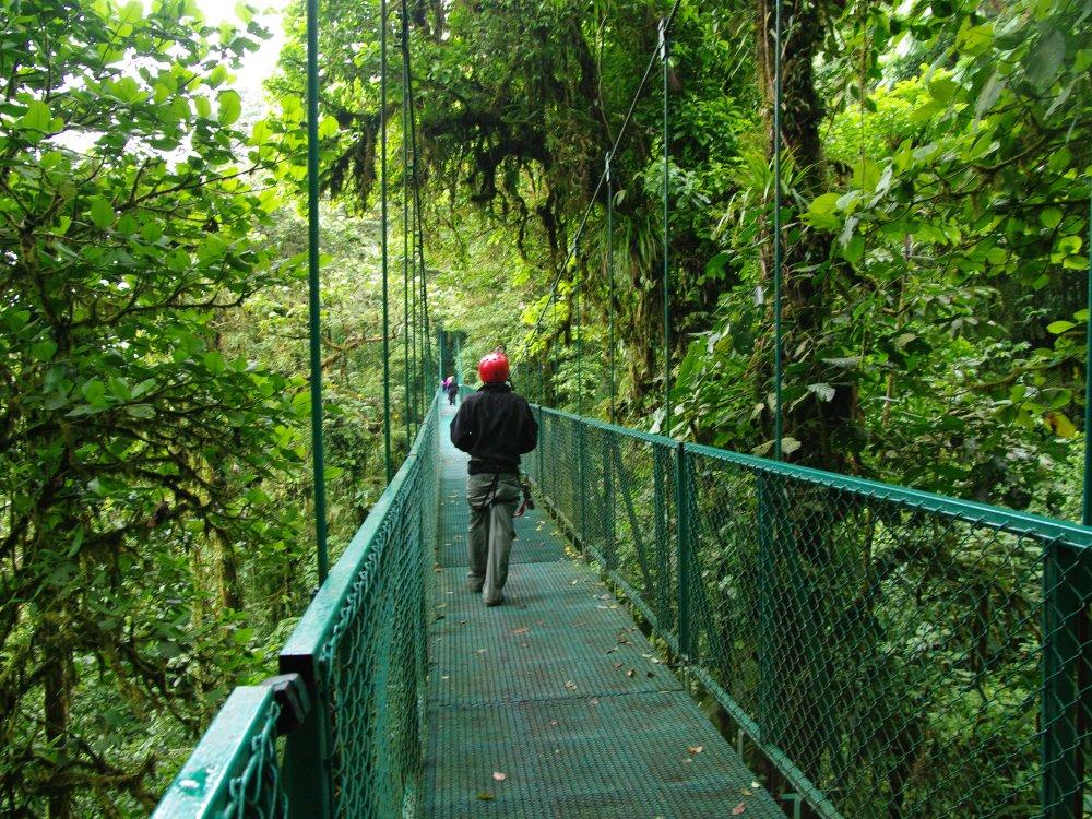Monteverde Cloud Forest Brücke