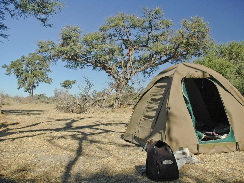 Moremi Camping in der Wildnis
