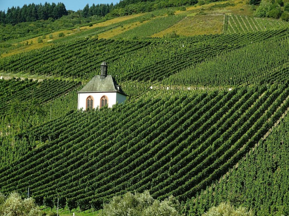 Kapelle im Weinberg an der Mosel