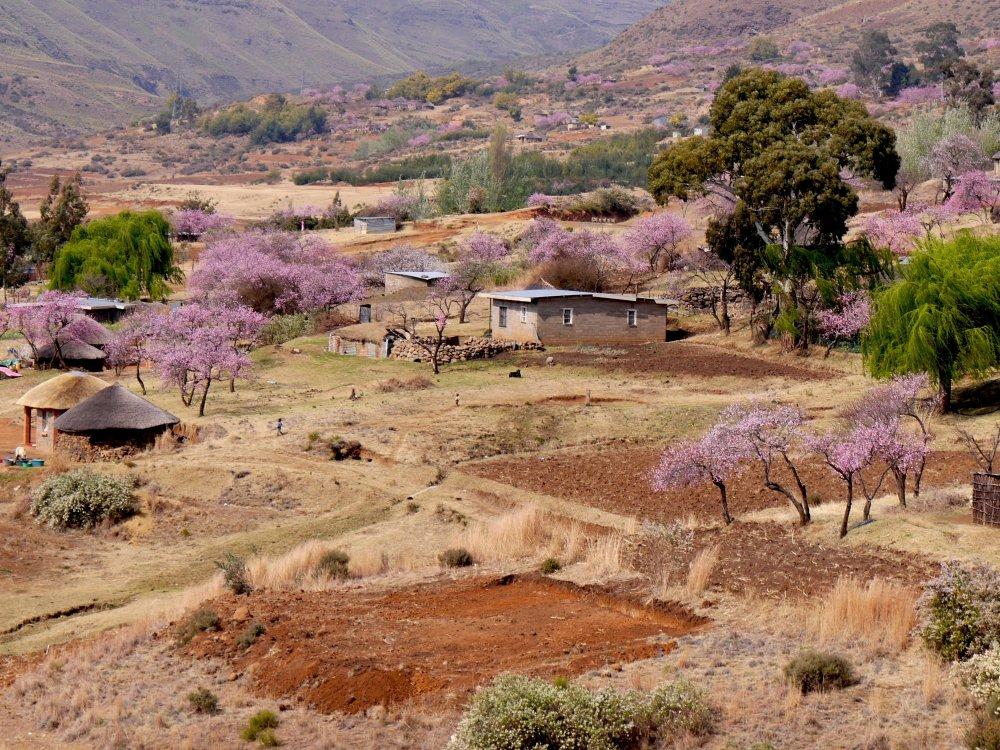 Dorf in Lesotho