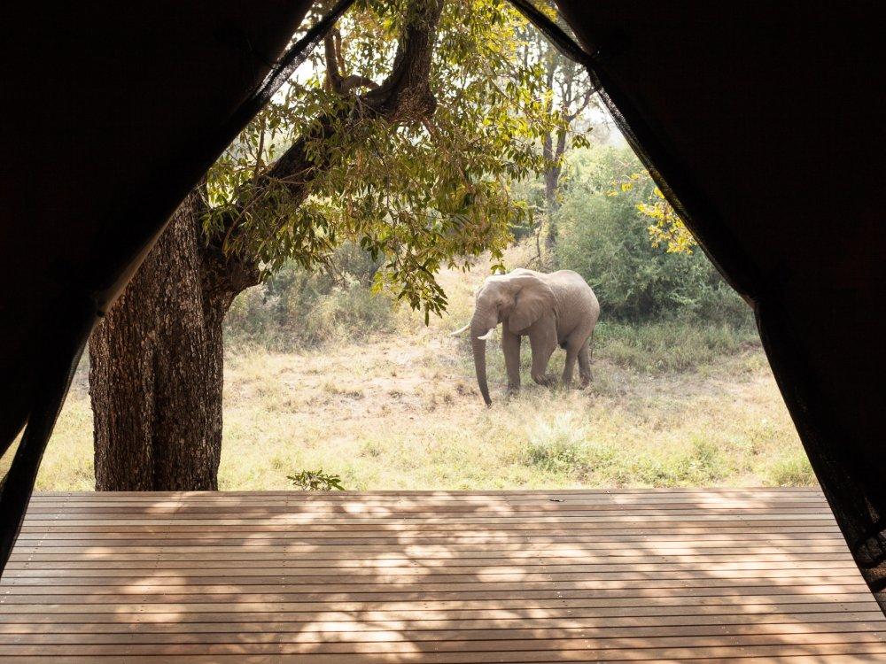 Garonga Safari Camp_3