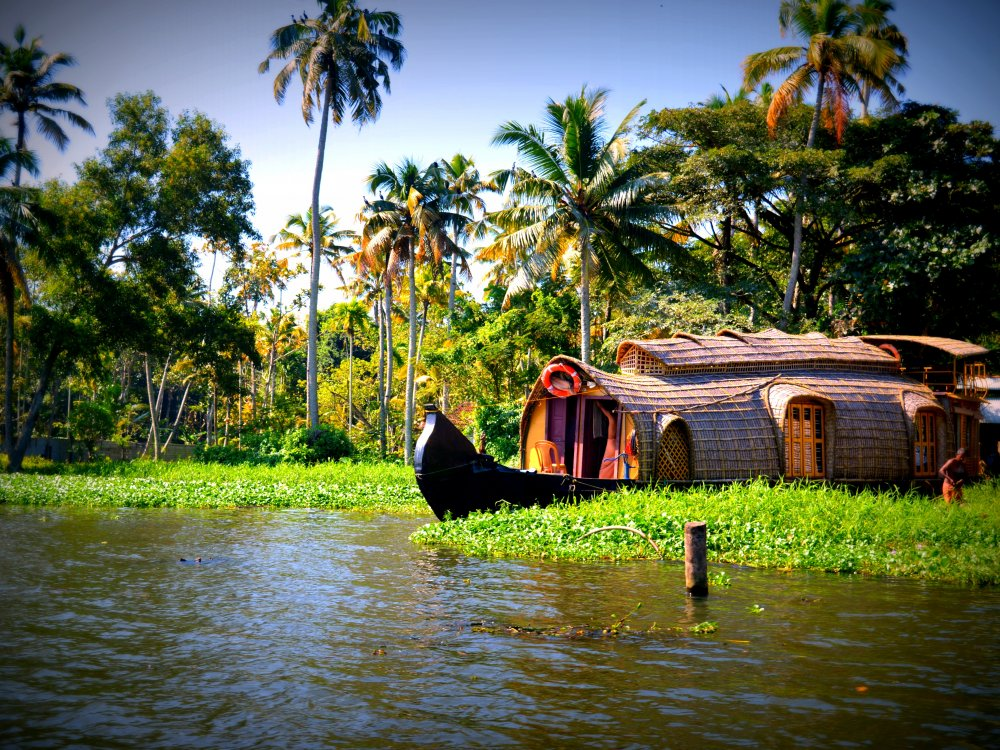Kerala Backwaters_1