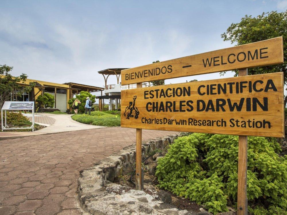 Galapagos Santa Cruz Puerto Ayora Charles Darwin Forschungsstation